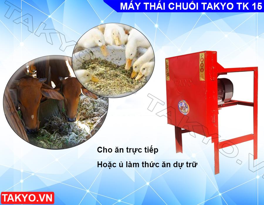 Chế phẩm khi sử dụng máy thái chuối Takyo TK 15