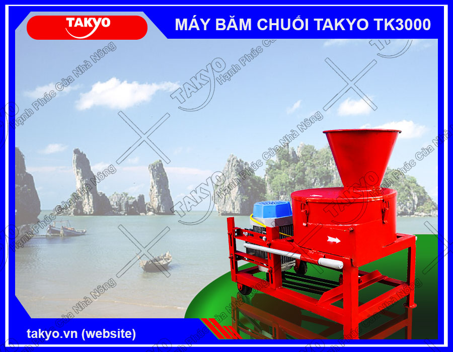 Phân phối máy băm thái chuối đa năng Takyo TK3000 cho lợn tại Kiên Giang