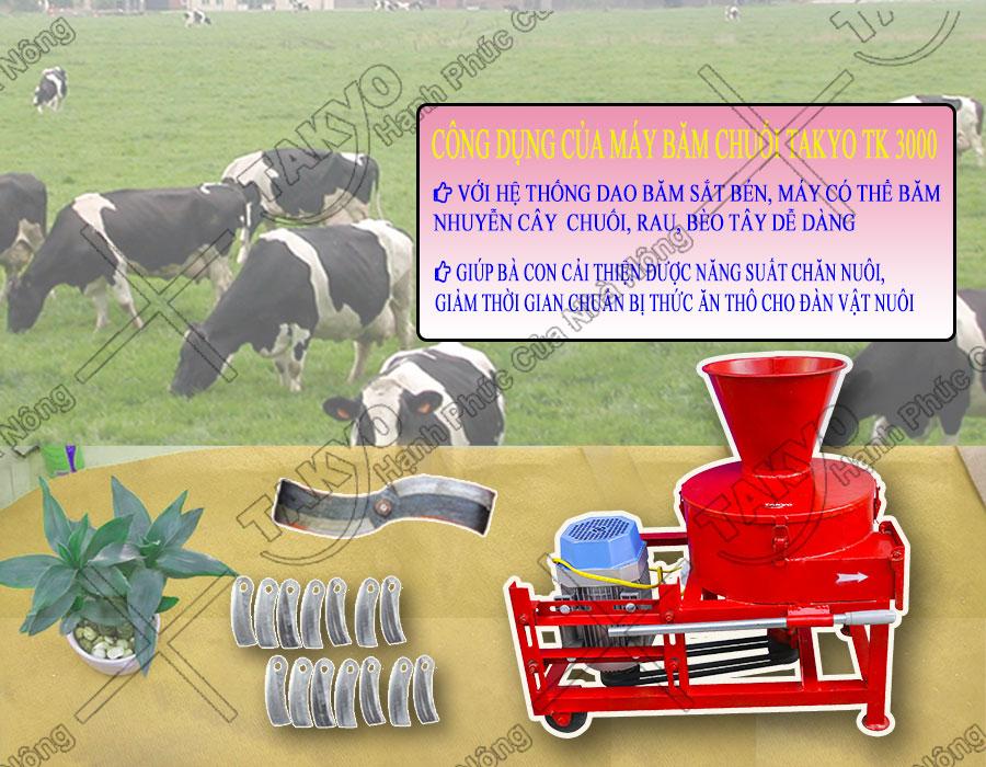 Những lưu ý khi sử dụng của máy băm thái chuối Takyo TK3000