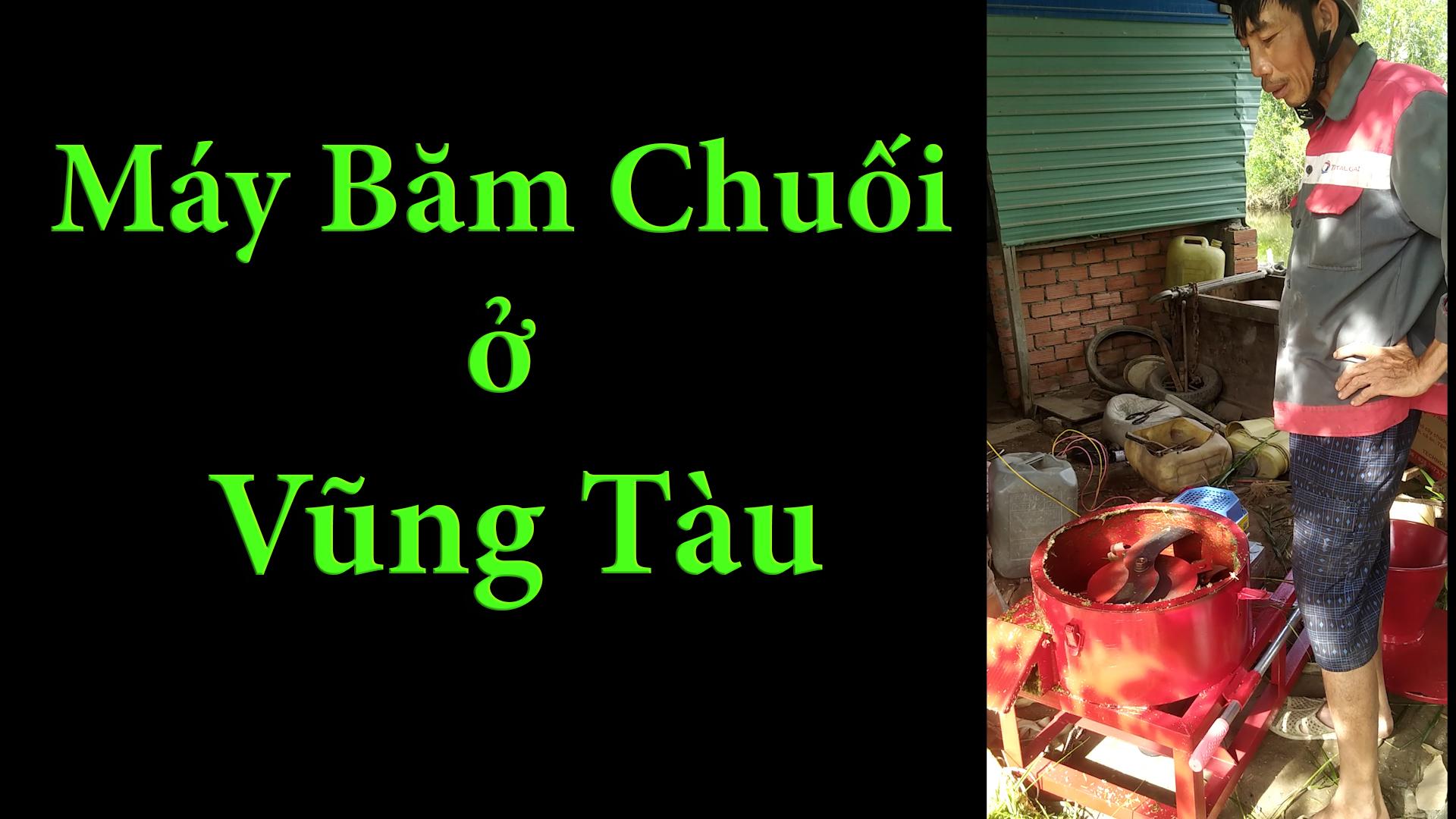Chạy thử máy và bàn giao máy thái chuối mịn làm thức ăn cho gà cho khách hàng ở Vũng Tàu