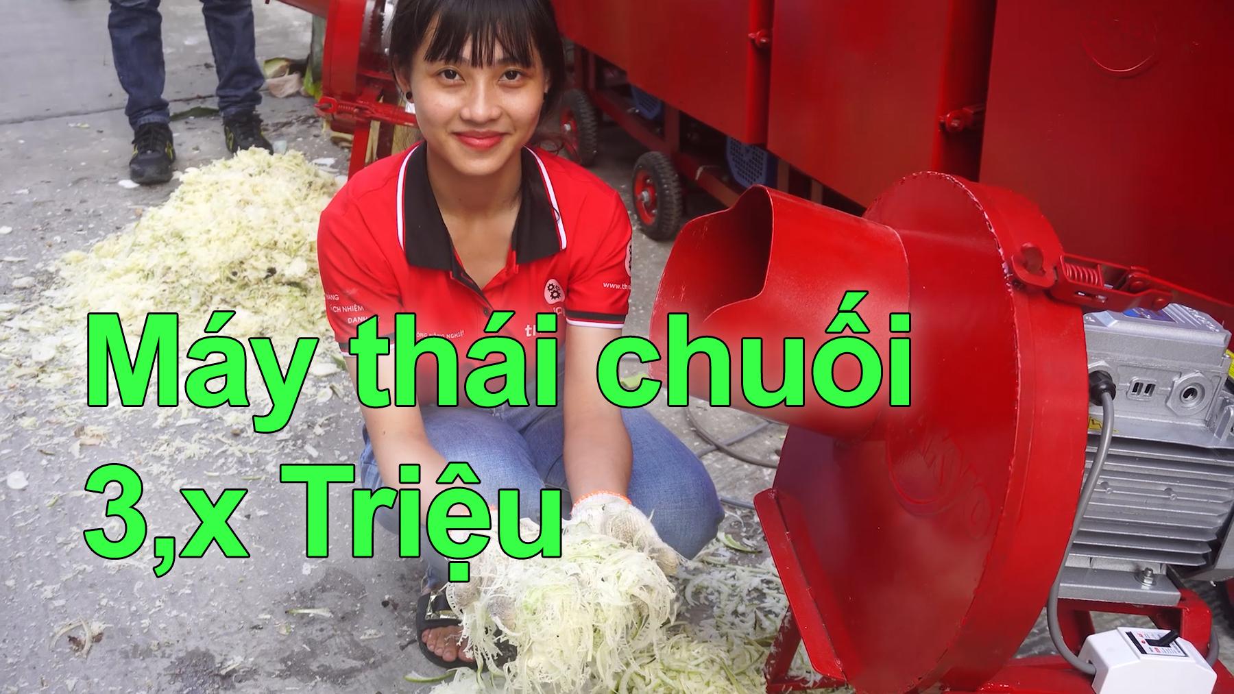 Máy thái chuối mịn dùng cho gia đình chăn nuôi gà vịt TAKYO TK 1500