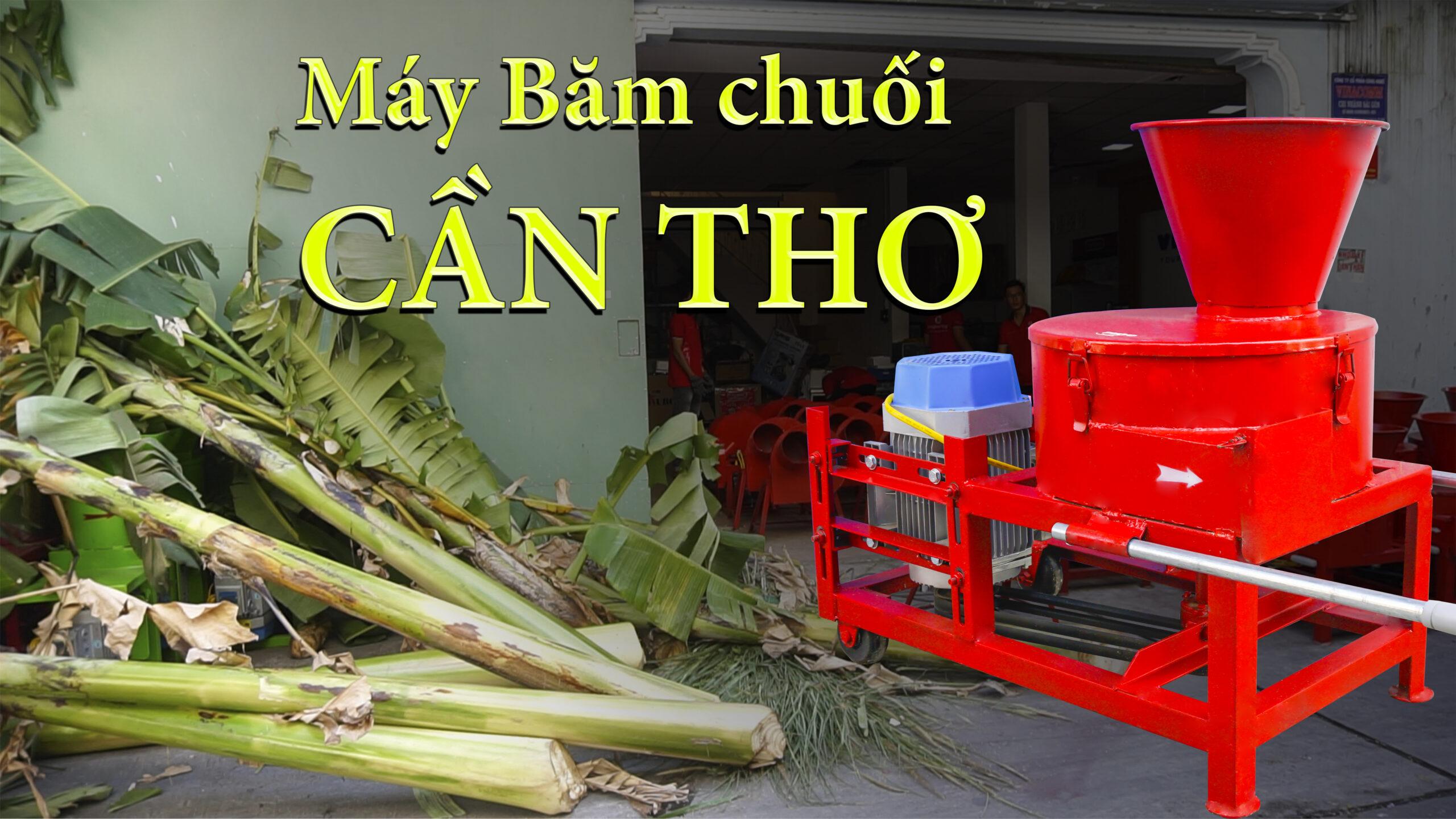 Máy băm chuối mịn tại Cần thơ, máy băm chuối TAKYO TK 3000 ở Cần Thơ