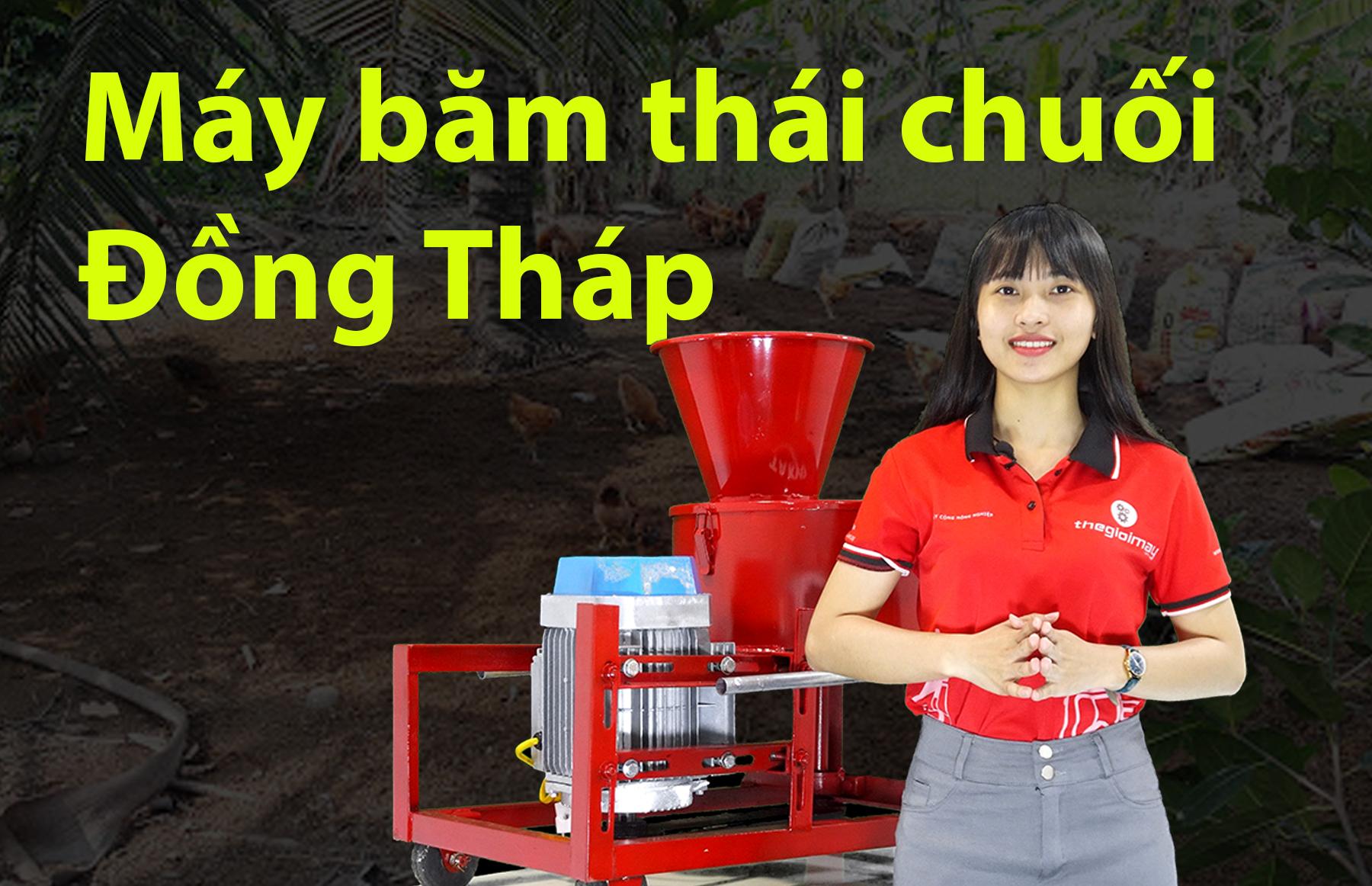 Máy băm chuối mịn ở Đồng Tháp, máy băm chuối TAKYO TK 3000 ở Đồng Tháp