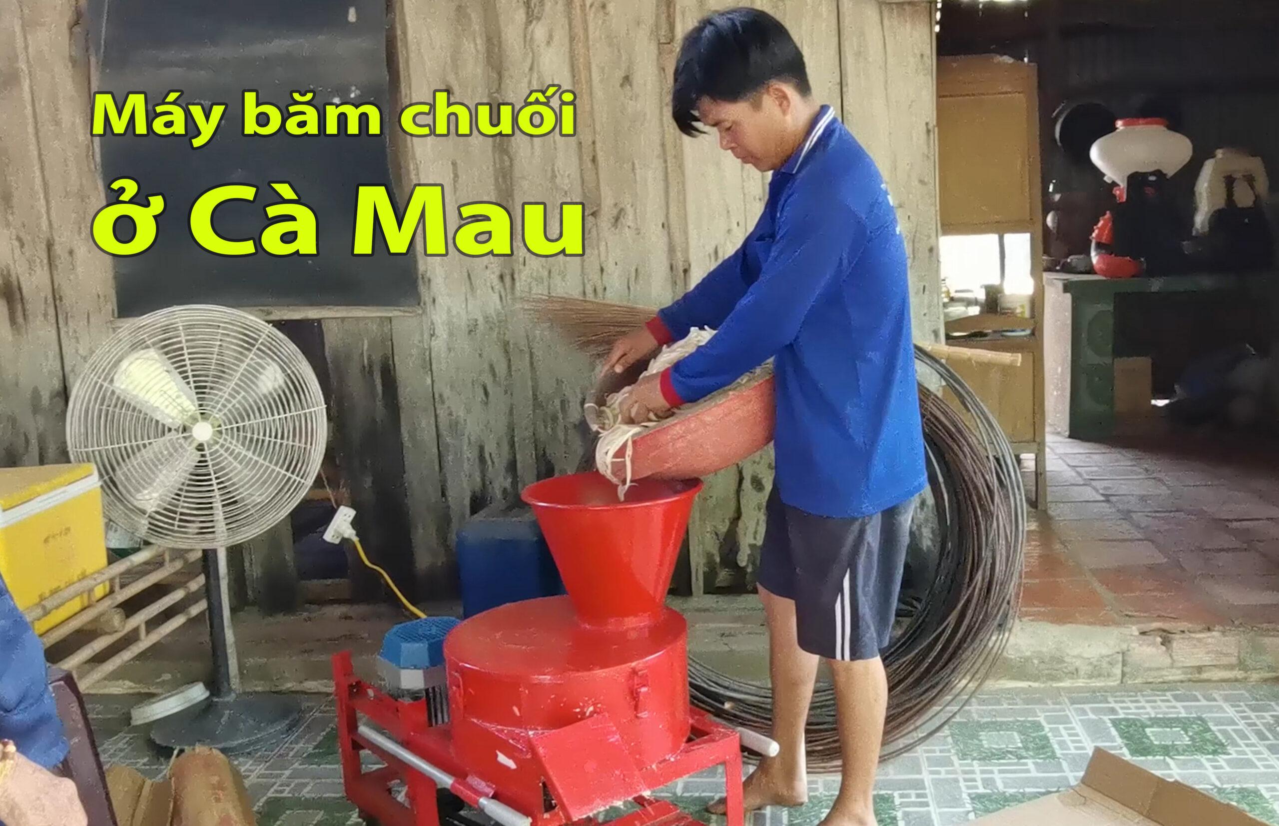 Máy băm chuối mịn TAKYO TK 3000, dòng máy băm thái chuối đa năng ở Cà Mau