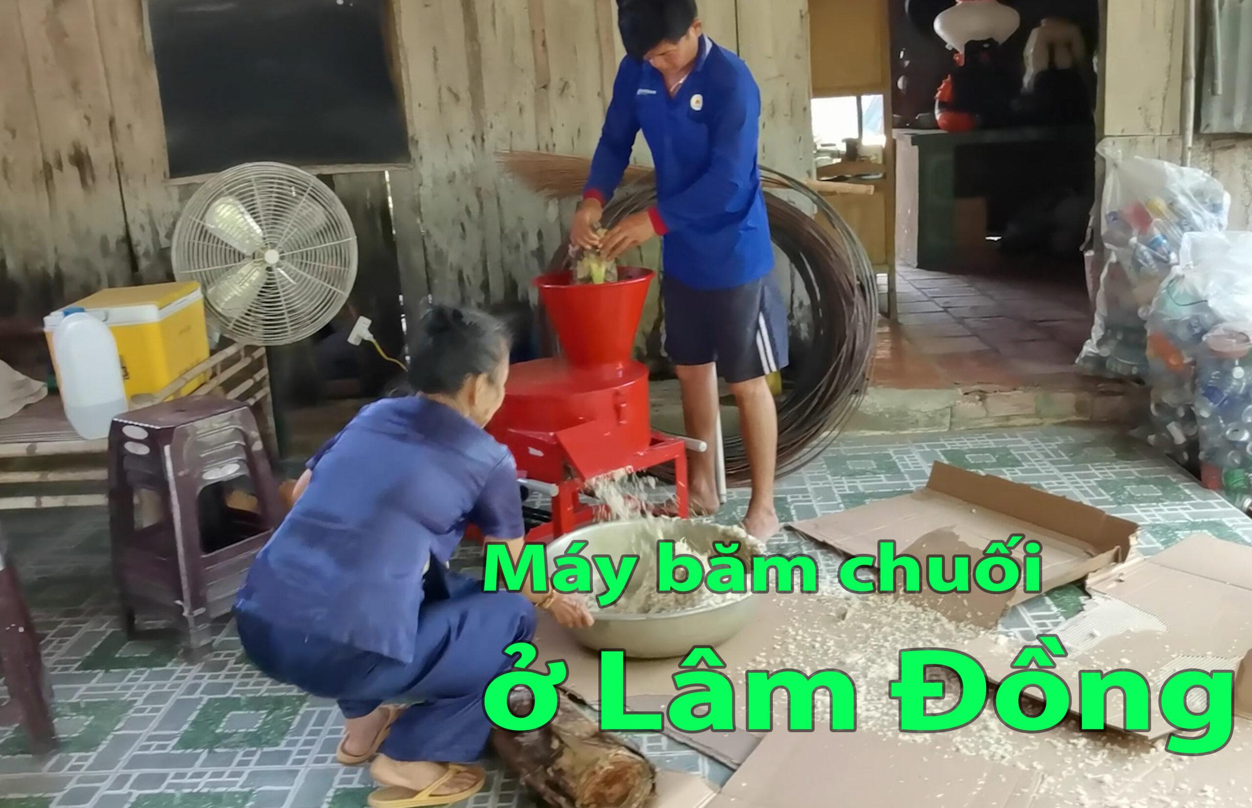 Máy băm chuối mịn ở Lâm Đồng, máy băm chuối ở Lâm Đồng tốt nhất
